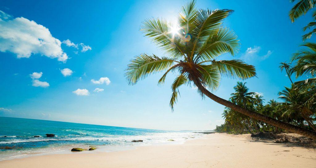 Bãi Sao -bãi biển tuyệt đẹp với cát trắng nắng vàng